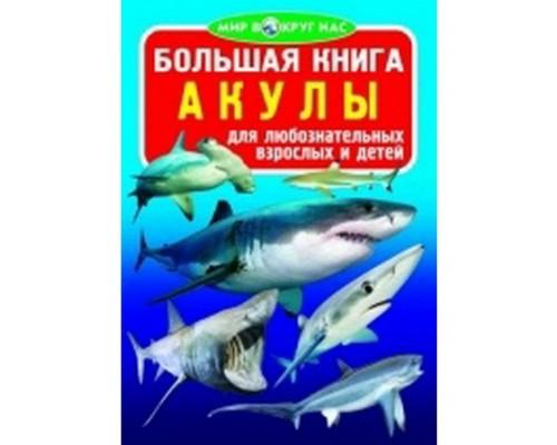 Большая книга Акулы