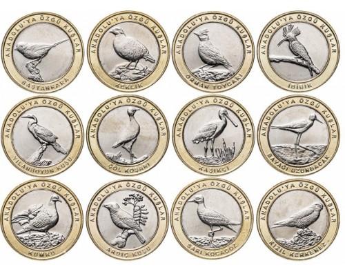 БЕЗ СКИДКИ Монета 1 куруш Турция Птицы 2019